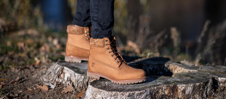 chaussuez timberland